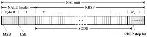 NAL Unit raw byte sequence payload